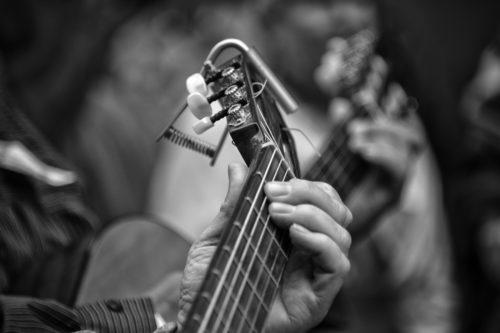 ID D17 2243 – Guitars