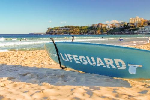 ID D17 2319 – Lifeguard