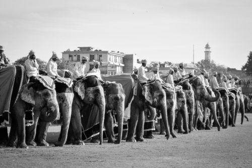 ID D17 2392 – India-festival de Jaipur