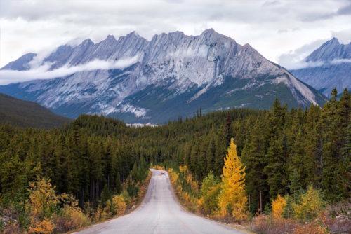 ID D17 2500 – Jasper National Park