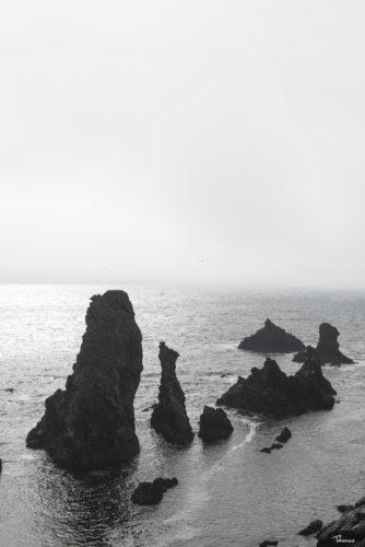 ID D17 2504 – Belle île