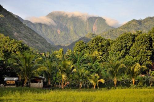 ID D18 1011 – Tropical Sunrise, Indonesia