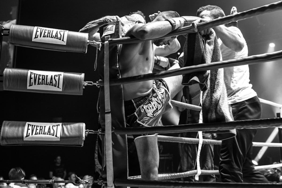 Virginie Cressot ID 2384 – Boxeur – reprise