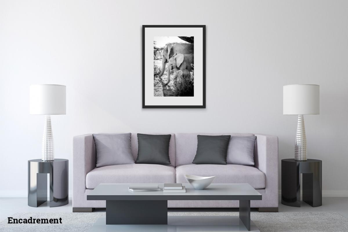 Mathieu Liminana ID D17 2341 – Trois modeles