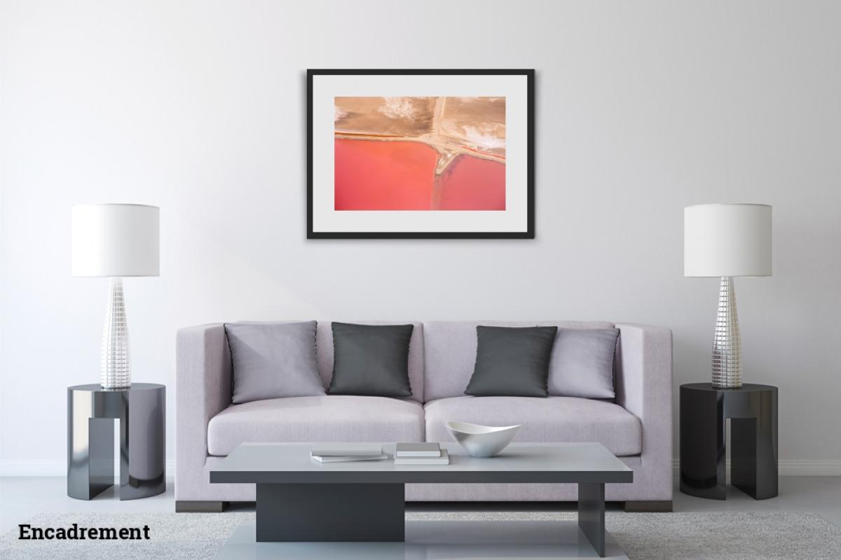 Mathieu Liminana ID D17 2366 – Rose abstrait #2