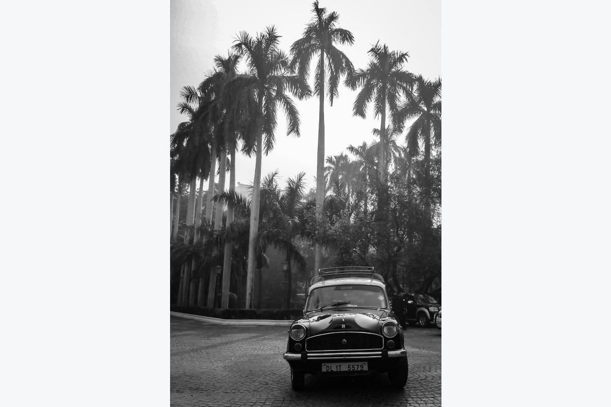 Virginie Cressot ID D17 2391 – New delhi – the impérial
