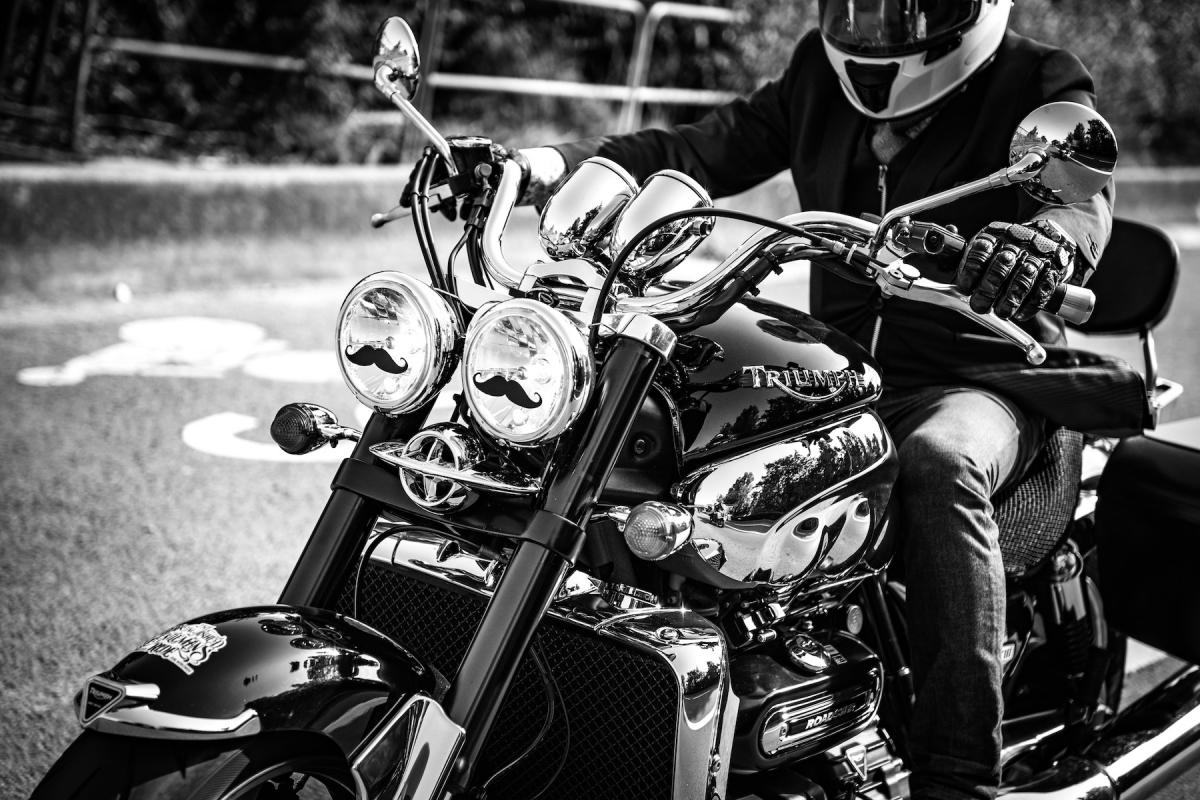 Virginie Cressot ID D17 2400 – Triumph