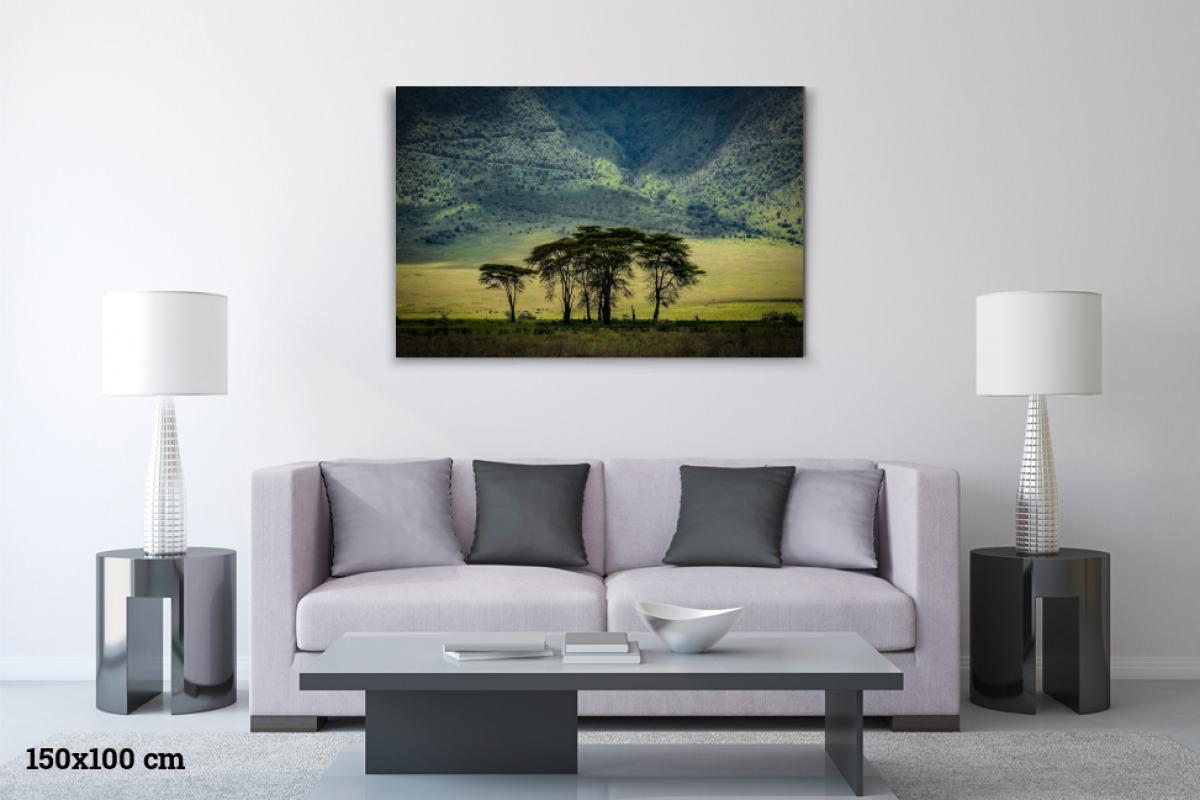 Virginie Cressot ID D17 2403 – Tanzanie-green land