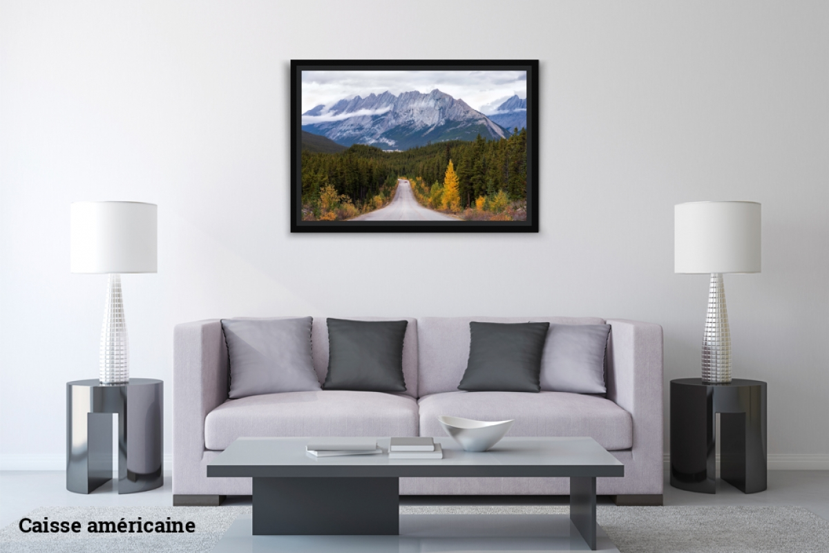 Delight ID D17 2500 – Jasper National Park