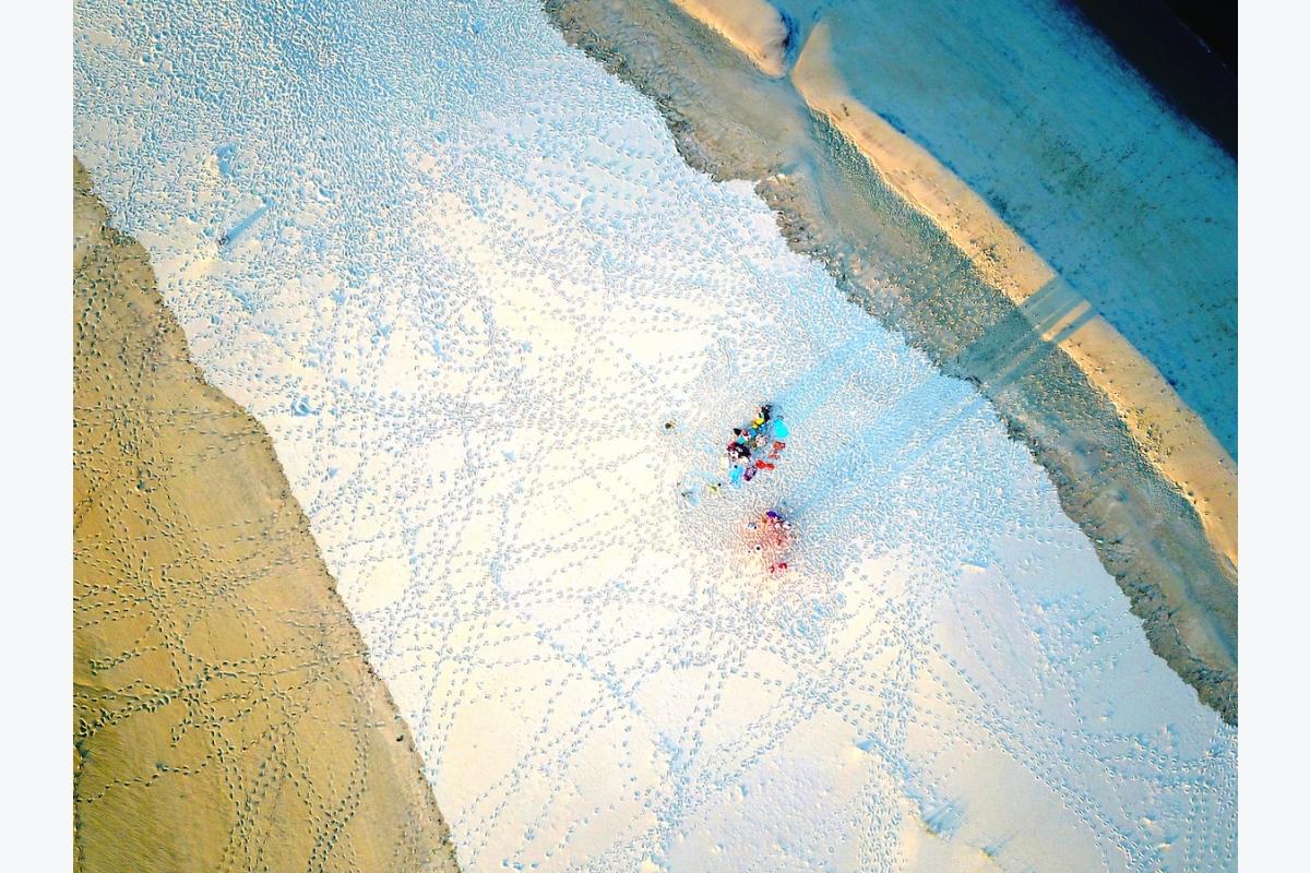 Florence Houriez ID D18 1119 – Nuancier et dentelle de sable